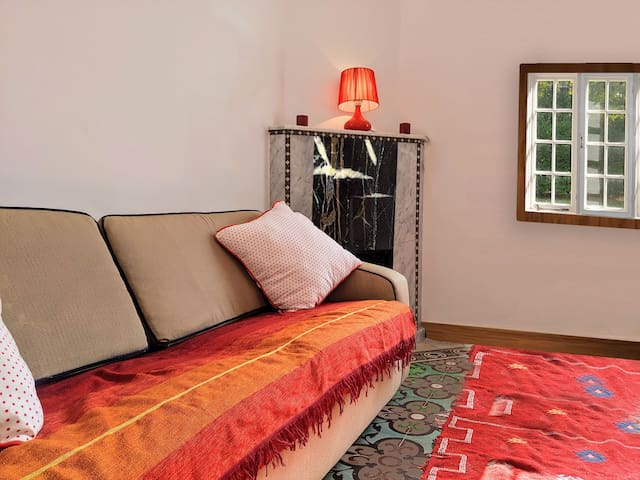 Spacious private room in a Villa (5min to Tramway)