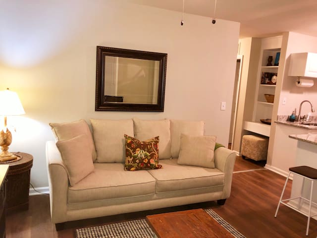 Modern 2-BR. apartment just minutes from downtown!