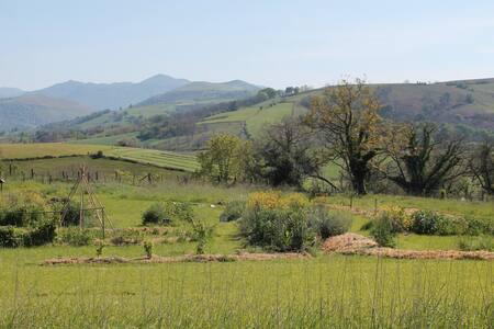 TERRA SYLVA : Studio et jardin avec vue