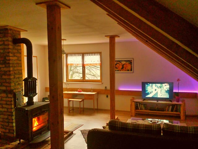 Traditional cozy apartment near Plitvice lakes