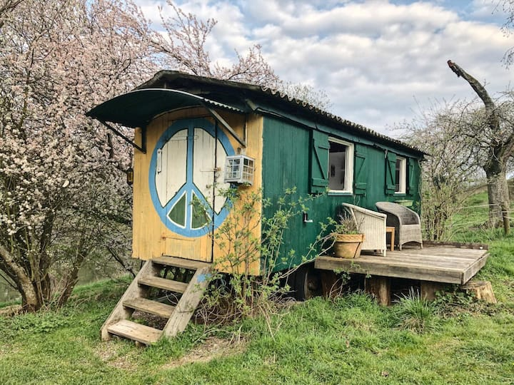 Charming Lakeside Circus Wagon in the countryside