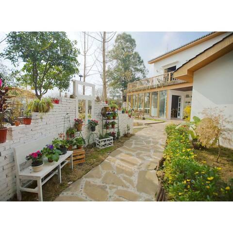 【安隅小院·银杏】隐于城市川西小院,有花有草有大树,有茶有友有阳光 - 成都市 - Villa