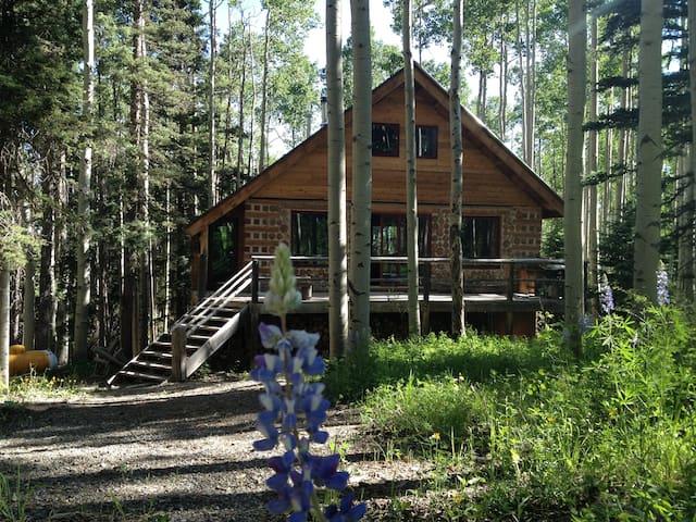 Fantastic  Retreat Home