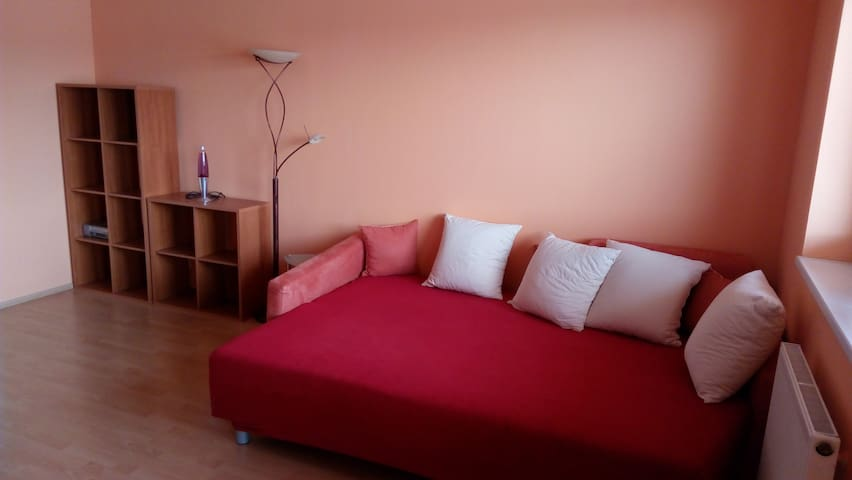 Homely apartment - Praag - Appartement