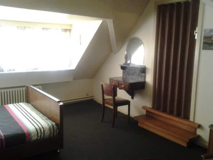 Cozy vintage room in Villa Broes