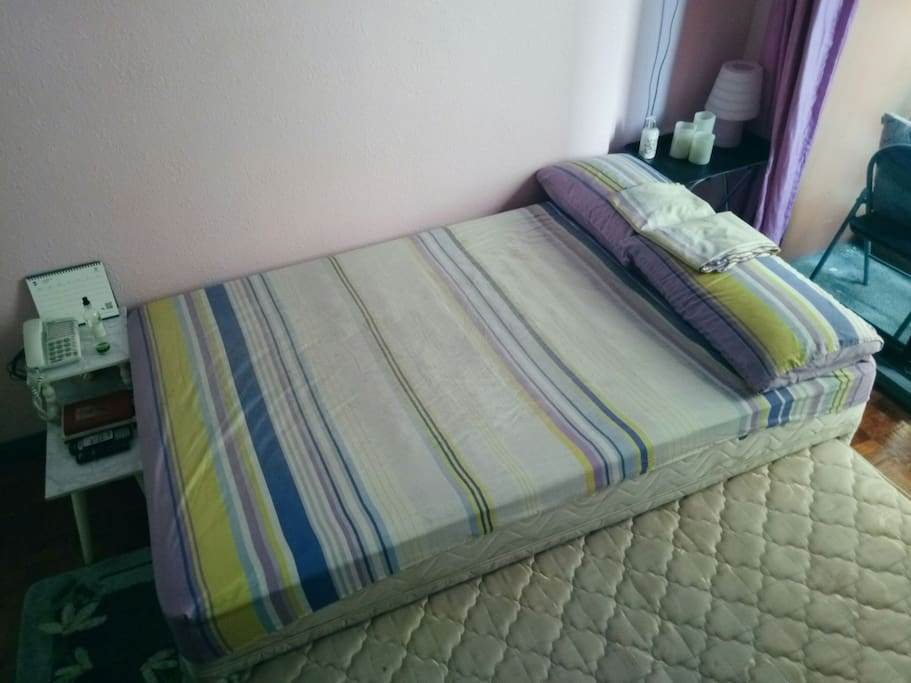 Queen Size Pullout Bed