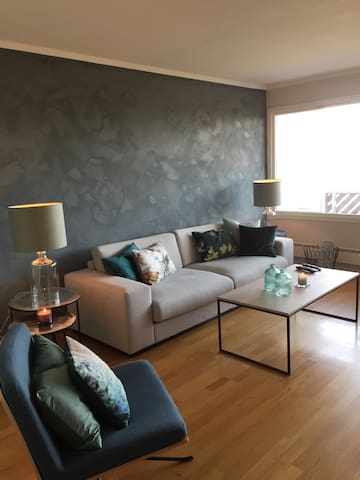 Nice apartment close to train station and Oslo