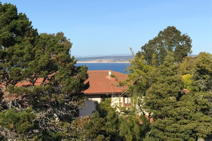 Private bedroom in great location with great view! - Monterey - Flat