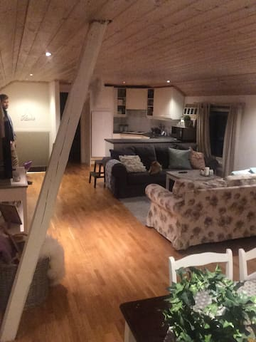 Charming And cozy apartment near Drammen - Sande - Pis