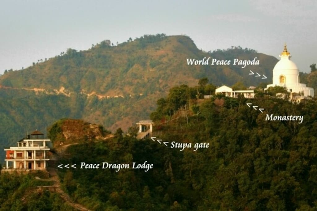 Peace Dragon in relation to World Peace Pagoda