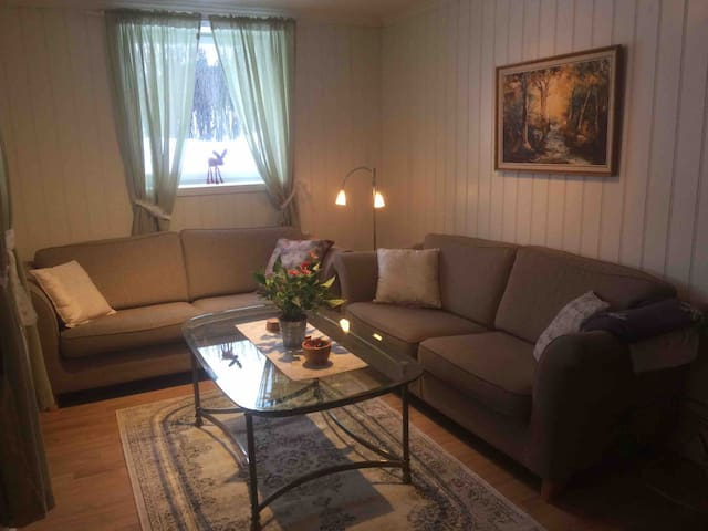 Cozy apartment close to Hamar