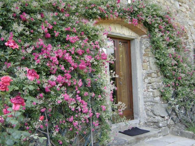 Vacanza a Pietrabuona: l'appartamento di Mezzo