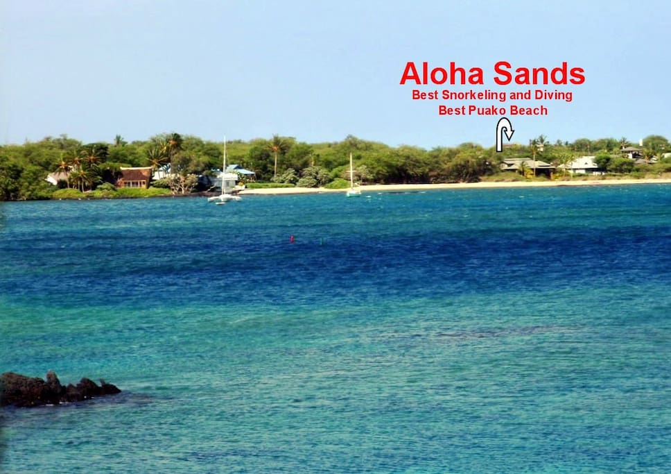 """""""Aloha Sands"""" Beach and Bay Front"""