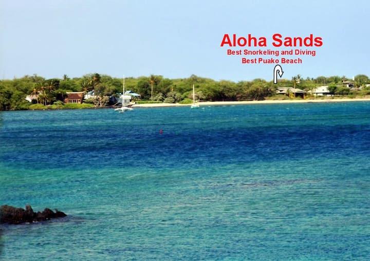 Aloha Sands Beach Front-Villa & Guest Apartment