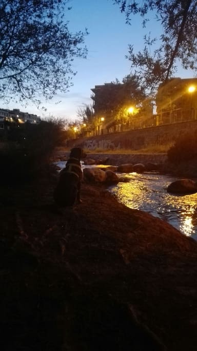 rio genil anochecer