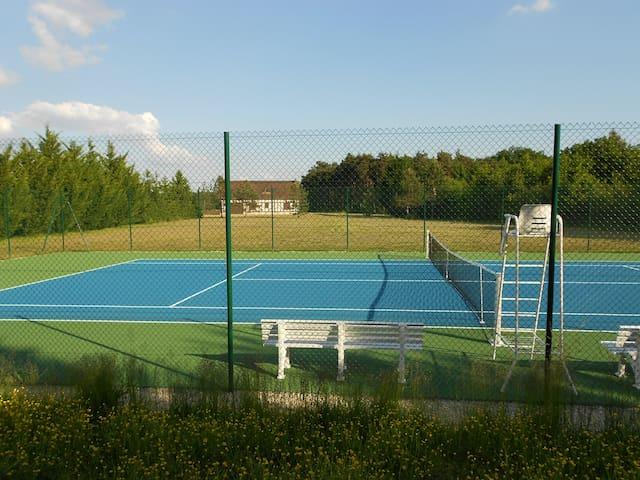 Lodge de la Sapinière, piscine, pêche, tennis - Fontaines-en-Sologne - Casa