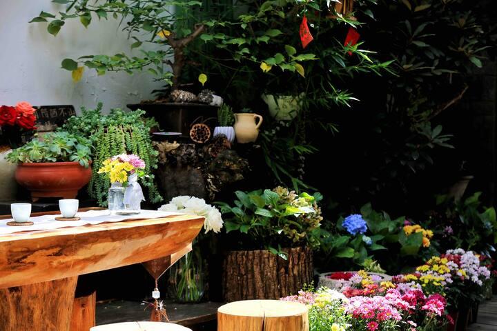 古城中心多肉植物花园  二楼阳光大床房