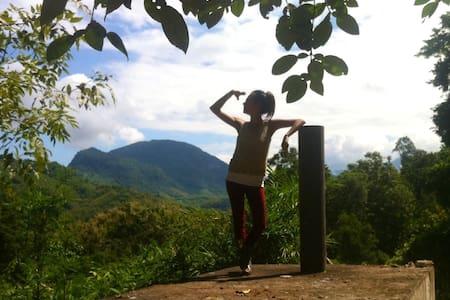 Jungle Eco Bungalow Experience - Luang Prabang