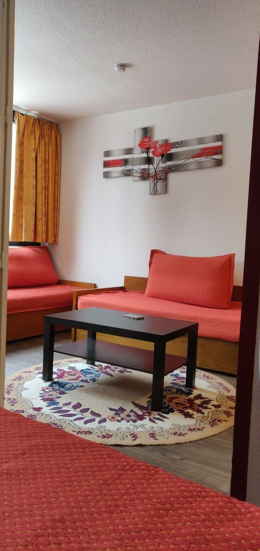 "joli appartement  "" le chamois blanc"" Chamonix"