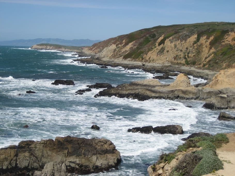 Shores of Bodega Bay