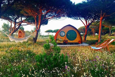 Peaceful, romantic wooden pod on beautiful coast