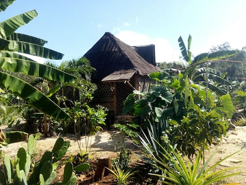 Mayan Cabin in private jungle, 12km from main road