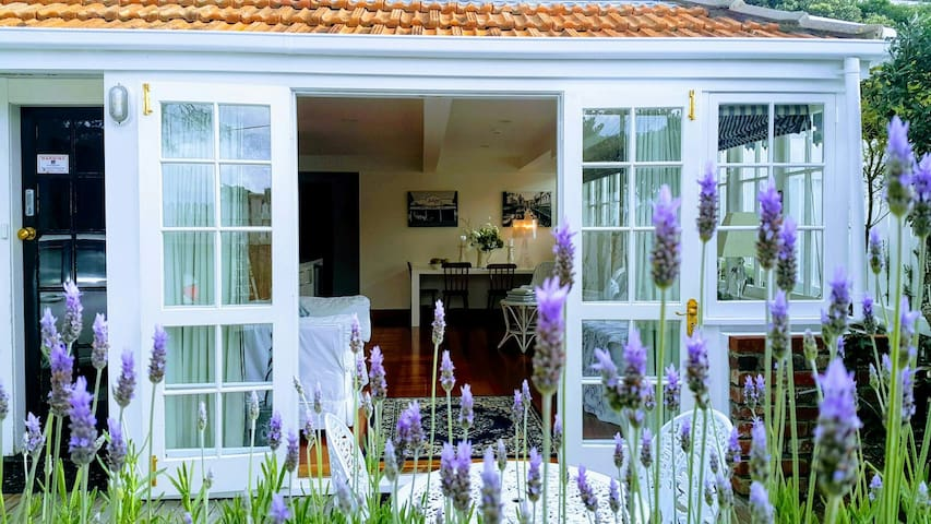 Gorgeous Lavender Apartment in Kelburn