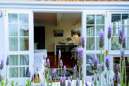 Gorgeous Lavender Apartment Kelburn
