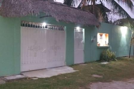 Iguanas Place