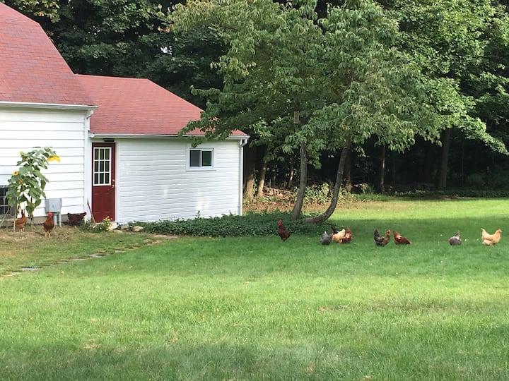 Mitchell Farm Cottage