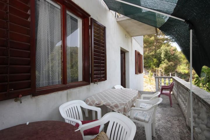 Two bedroom apartment with terrace and sea view Zaglav, Dugi otok (A-8134-a)