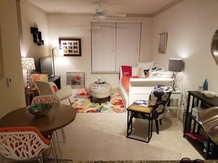 Cozy, Luxury Apt for Weekend/Holiday Getaways