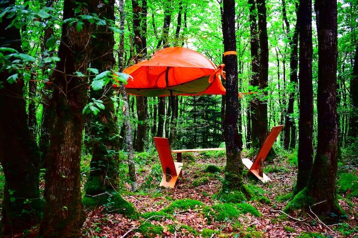 Tente suspendue dans la forêt - Saint-Ségal