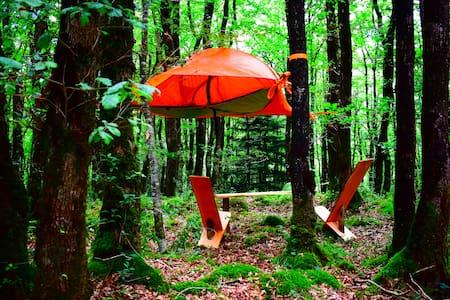 Tente suspendue dans la forêt - Saint-Ségal - Tent