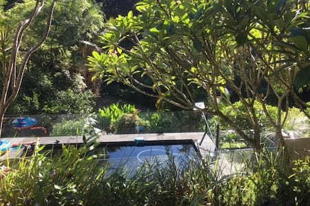 Rainforest Retreat - Wilsons Creek