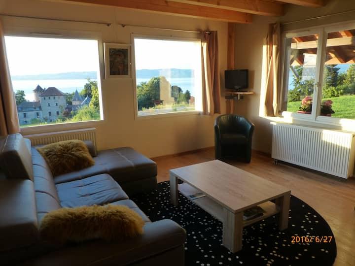 appartement  dans grange en pierre vue lac et ski