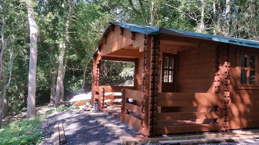 Log Cabin in private woodland, 2 miles from Whitby - Whitby - Cabaña
