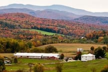 Fall foliage view of our farm house on the right and our neighbor's barn across the road.  You'll fall in love with our quaint, special place at the foot of the Green Mountains.