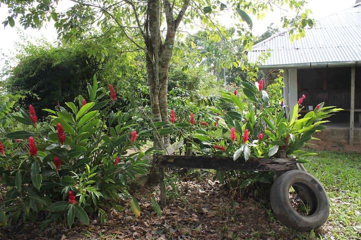 Casa de campo en Amazonía Rural  Peruana