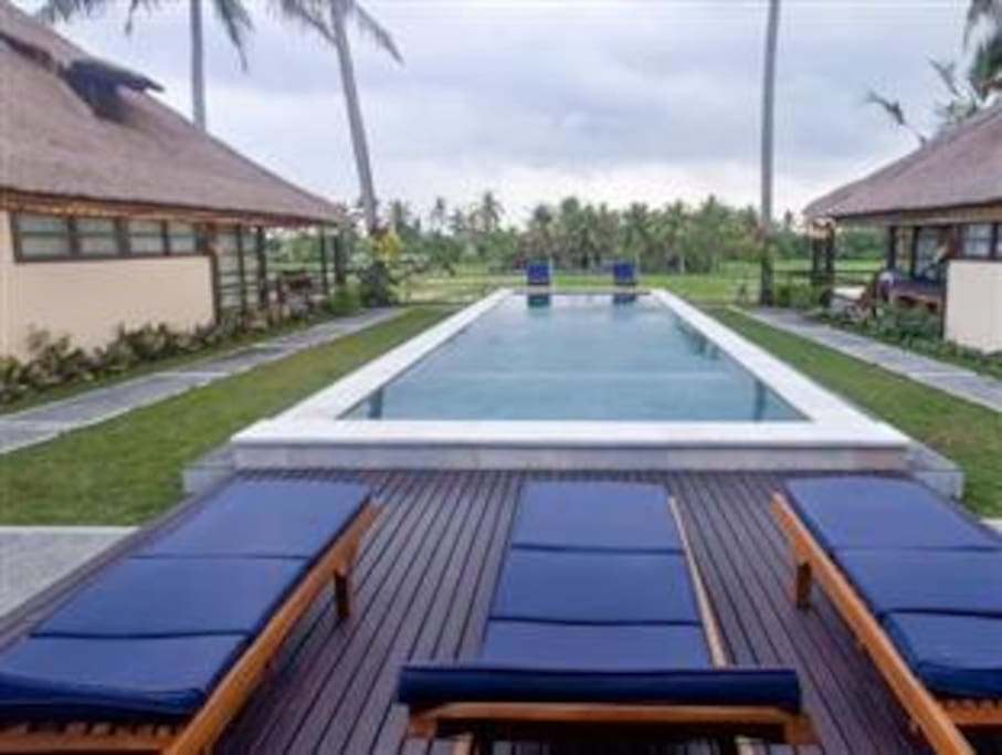 Inviting Pool with Rice Paddy View