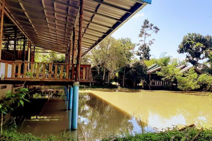 Phangan farm stay 203 Eco farming
