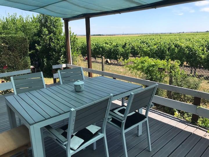 Agréable maison au calme avec vue sur les vignes