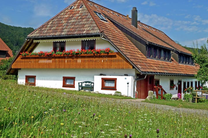 Comfortable Apartment in Rickenbach near Forest