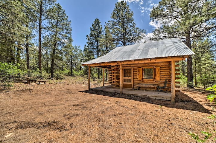 Cozy Cabin on 1,000 Acres by San Juan Forest!