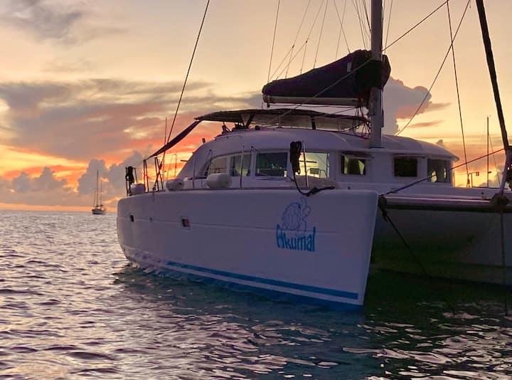 Chambre Privée sur Catamaran au Mouillage