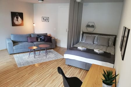 Apartment in the center of Celje Nobl plac