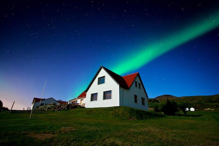 A cosy little farm close to Reykjavík city