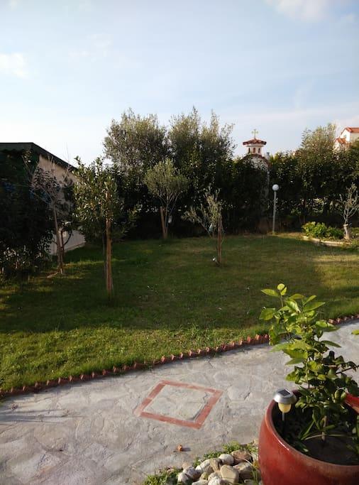 Τμήμα αυλής Part of backyard