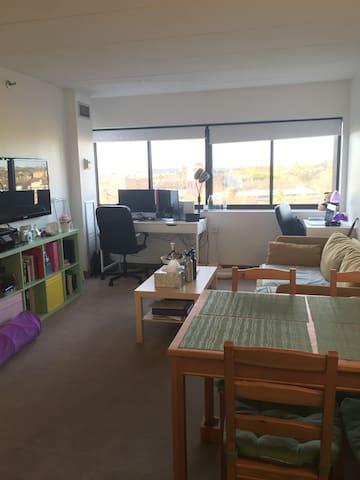 Entire Private Apartment in Brighton 1 bed 1 bath - Boston - Apartment