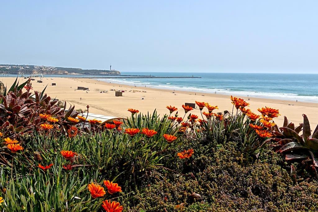 Praia Rocha